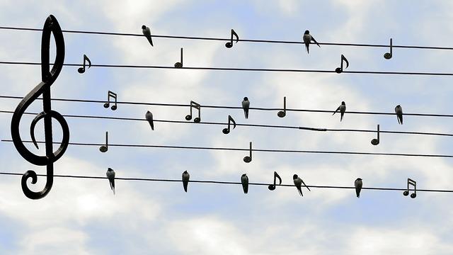Vtáky sedia na drôtoch, noty.jpg