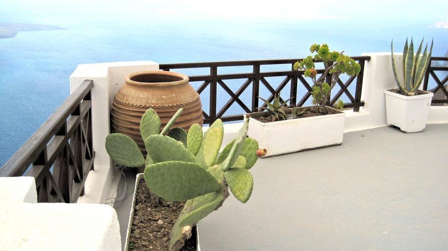 Balkón s veľkými kvetináčmi, v ktorých sú kaktusy.jpg